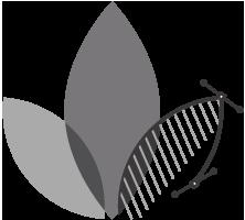 Floradesign